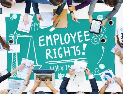 Employment Law Advice: Top 5 Things You Need To Know